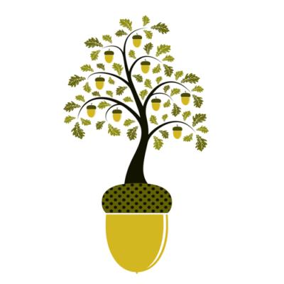 Acorn growing